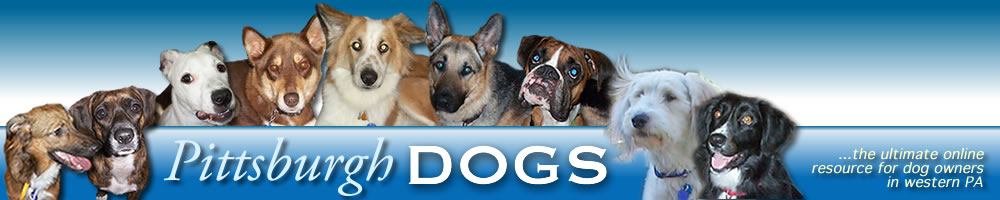 Pittsburgh Dogs